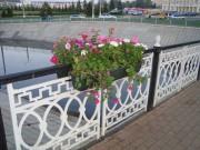 Цветы - везде